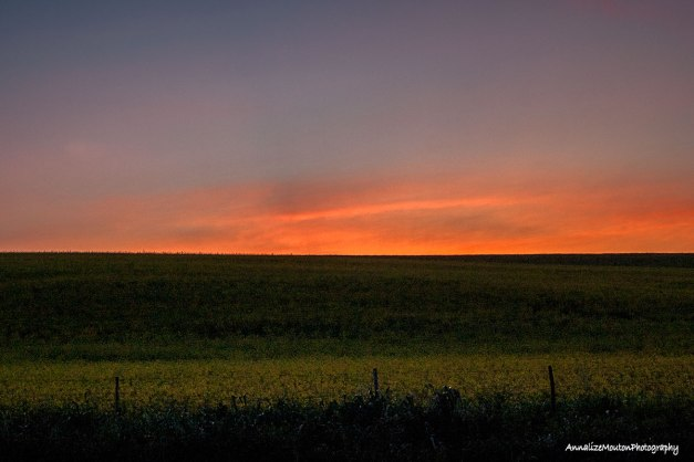 The last of the sunset over the koppie at Rooidriffie