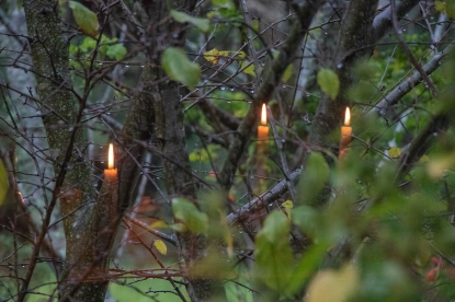 Fairy candles… Magical reflection through window into garden…
